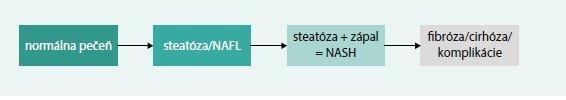 Schéma 1. Prirodzený vývoj, progresia NAFLD