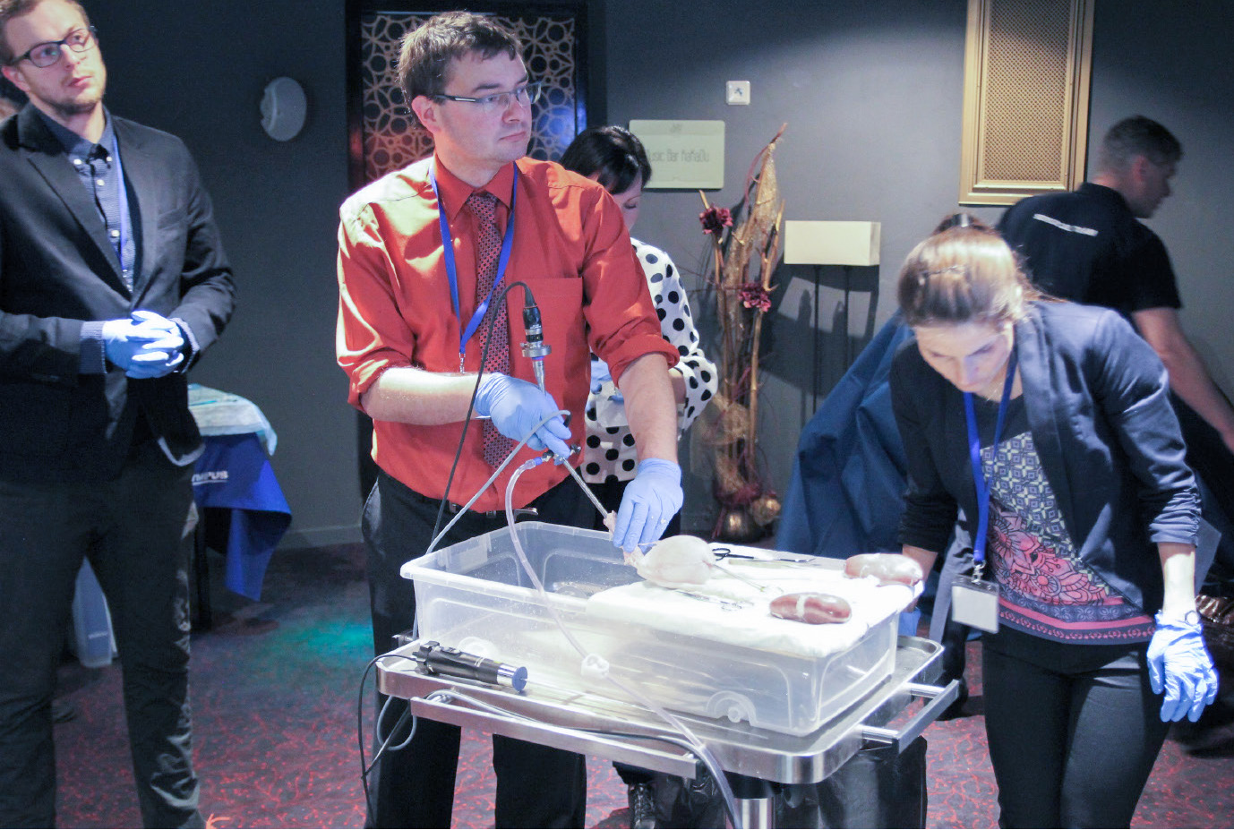 Obr. 7. Hands-on training endoskopie močových cest na prasečím modelu (Olympus)<br> Fig. 7. Hands-on training porcine urinary tract endoscopy (Olympus)