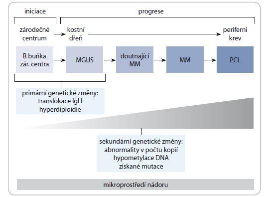 Schéma 1. Vývoj monoklonálních gamapatií.<br> MGUS – monoklonální gamapatie nejasného významu, MM – mnohočetný myelom, IgH – gen pro těžký řetězec imunoglobulinu, PCL – plazmocelulární leukemie