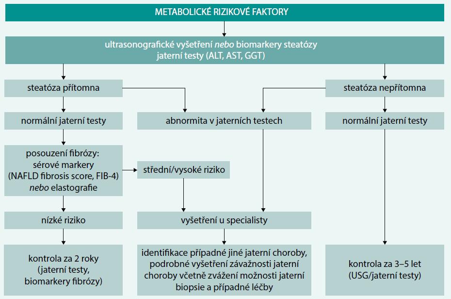 Schéma 2. Screening NAFLD/NASH u pacientů s metabolickými rizikovými faktory