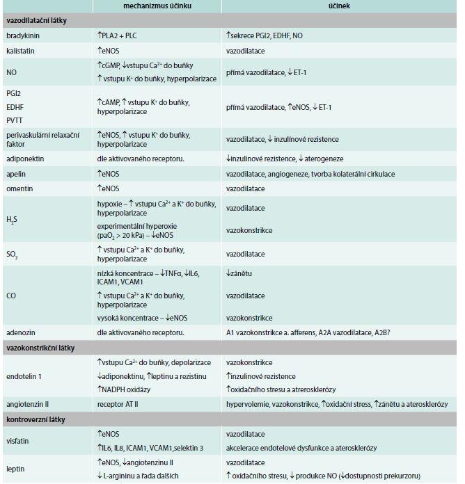 Přehled základních endoteliálních substancí