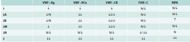 Rozdělení VWCH do typů a subtypů na základě výsledků jednotlivých vyšetření