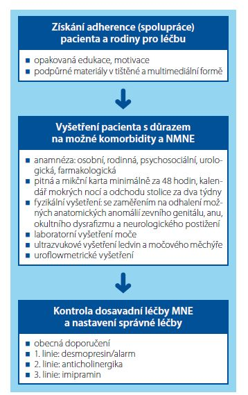 Tři základní kroky v diagnostice a léčbě rezistentního