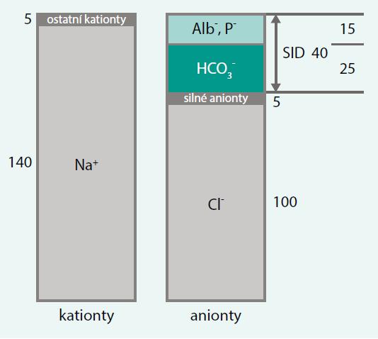 Princip elektroneutrality tělních tekutin
