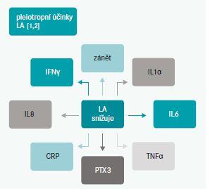 Schema. Pleiotropní účinky při léčbě lipoproteinovou aferézou. Upraveno podle [6]