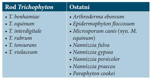 Seznam druhů dermatofytů, jejichž spektra jsou zastoupena v databázi MALDI Biotyper Filamentou fungi library 1.0.