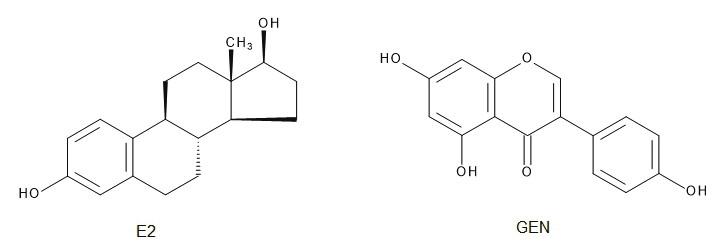 Štruktúra estradiolu (E2) a genisteínu (GEN)