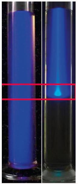 Demonstrace rozdílu mezi rozdělením dávky fotonového (vlevo) a protonového (vpravo) svazku, experiment za použití kapalného scintilátoru ukazuje fakt, že protonový svazek ozáří minimálně tkáň před cílovou oblastí (označeno červeným ohraničením) a žádnou za ní, kdežto svazek fotonů prozáří celý objem jak před ní, tak i za ní. V případě pacienta se zde nachází zdravá tkáň.