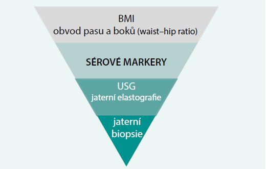 Postavení sérových markerů v diagnostickém postupu NASH