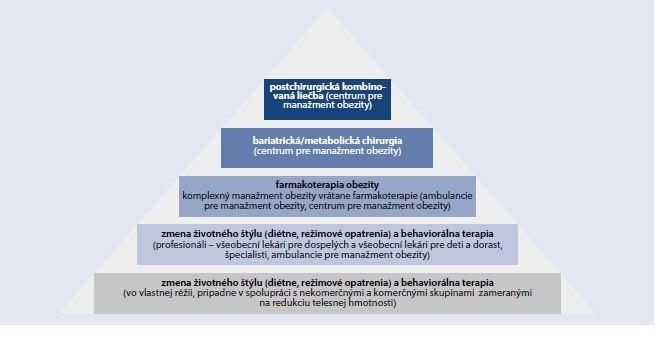 Schéma 2 | Pyramída viacúrovňovej dlhodobej starostlivosti o obézneho jedinca