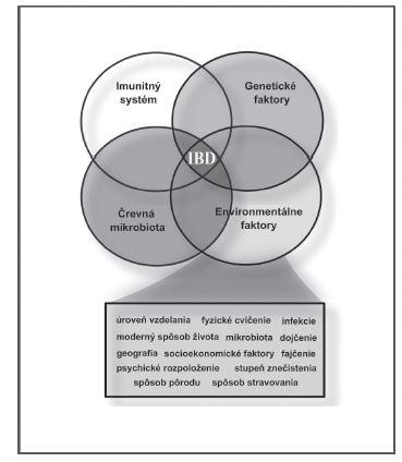 Faktory podieľajúce sa na rozvoji IBD (spracované podľa Ananthakrishnan a kol.<sup>12)</sup>)