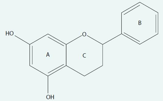 Základní chemická struktura flavonoidů